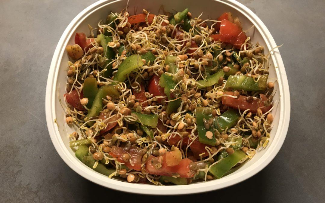 Knackiger Linsensprossen-Salat (vegan)